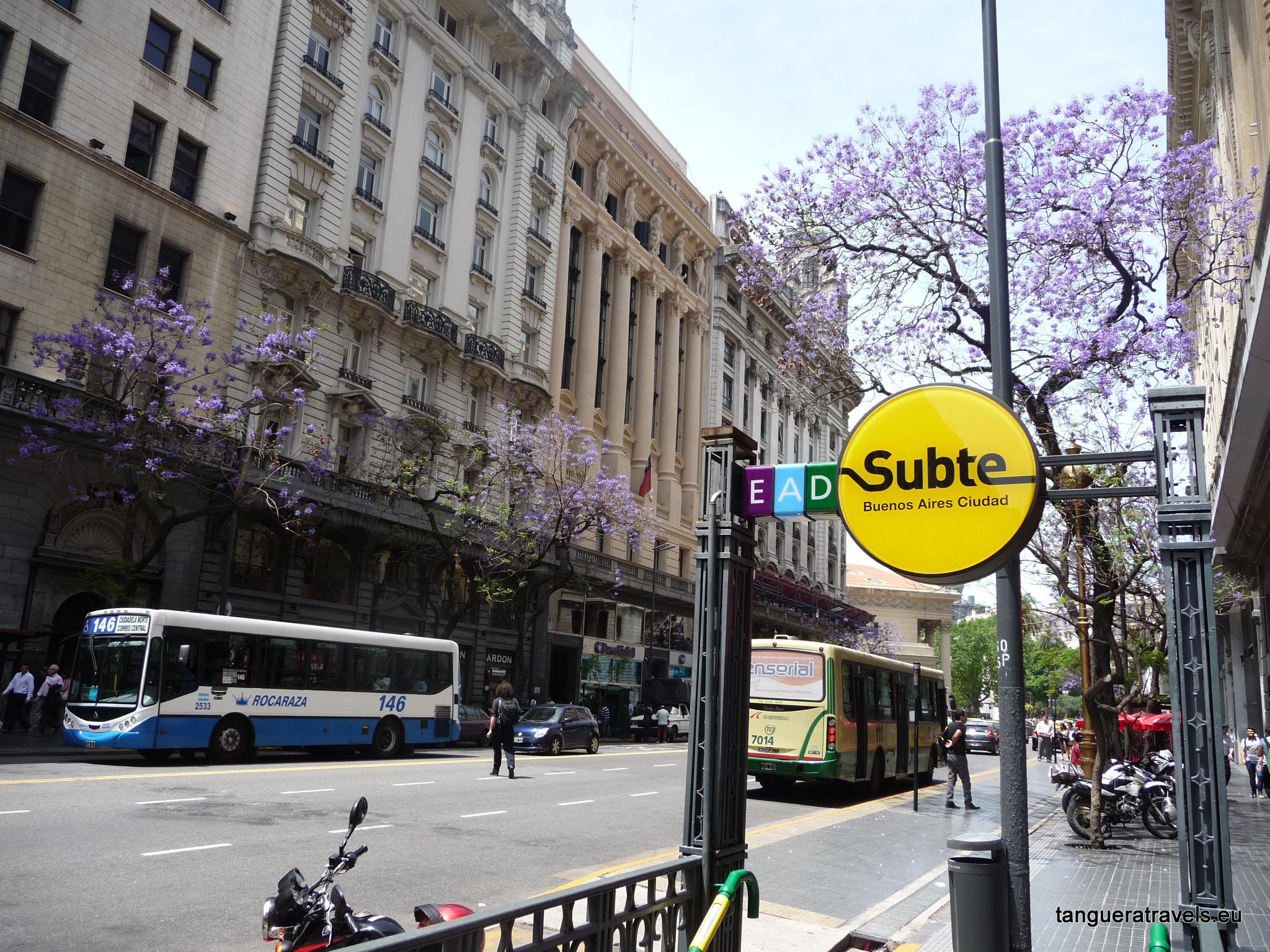 Subte station with Jacaranda, Buenos Aires
