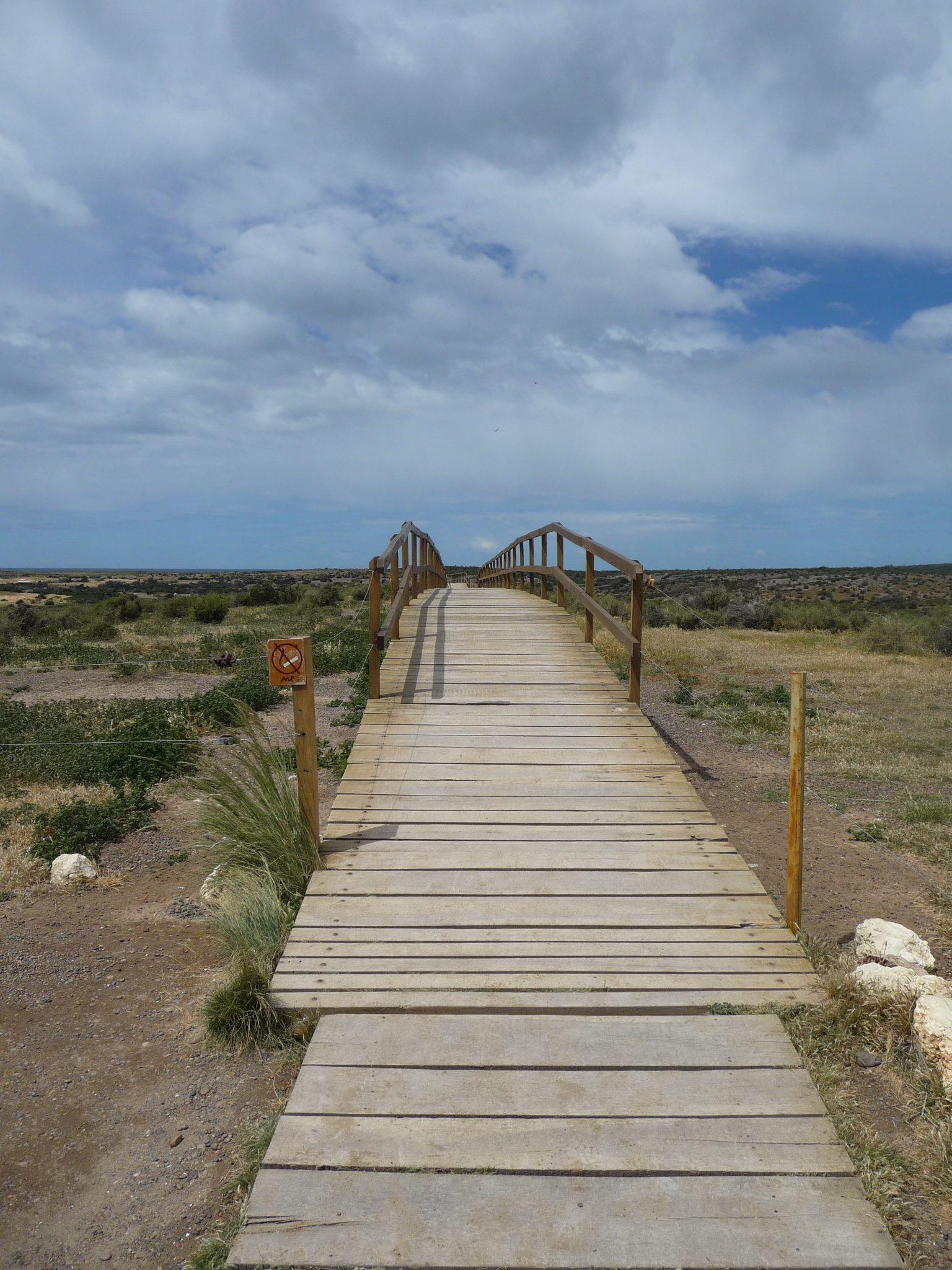 bridge in Punta Tombo nature reserve