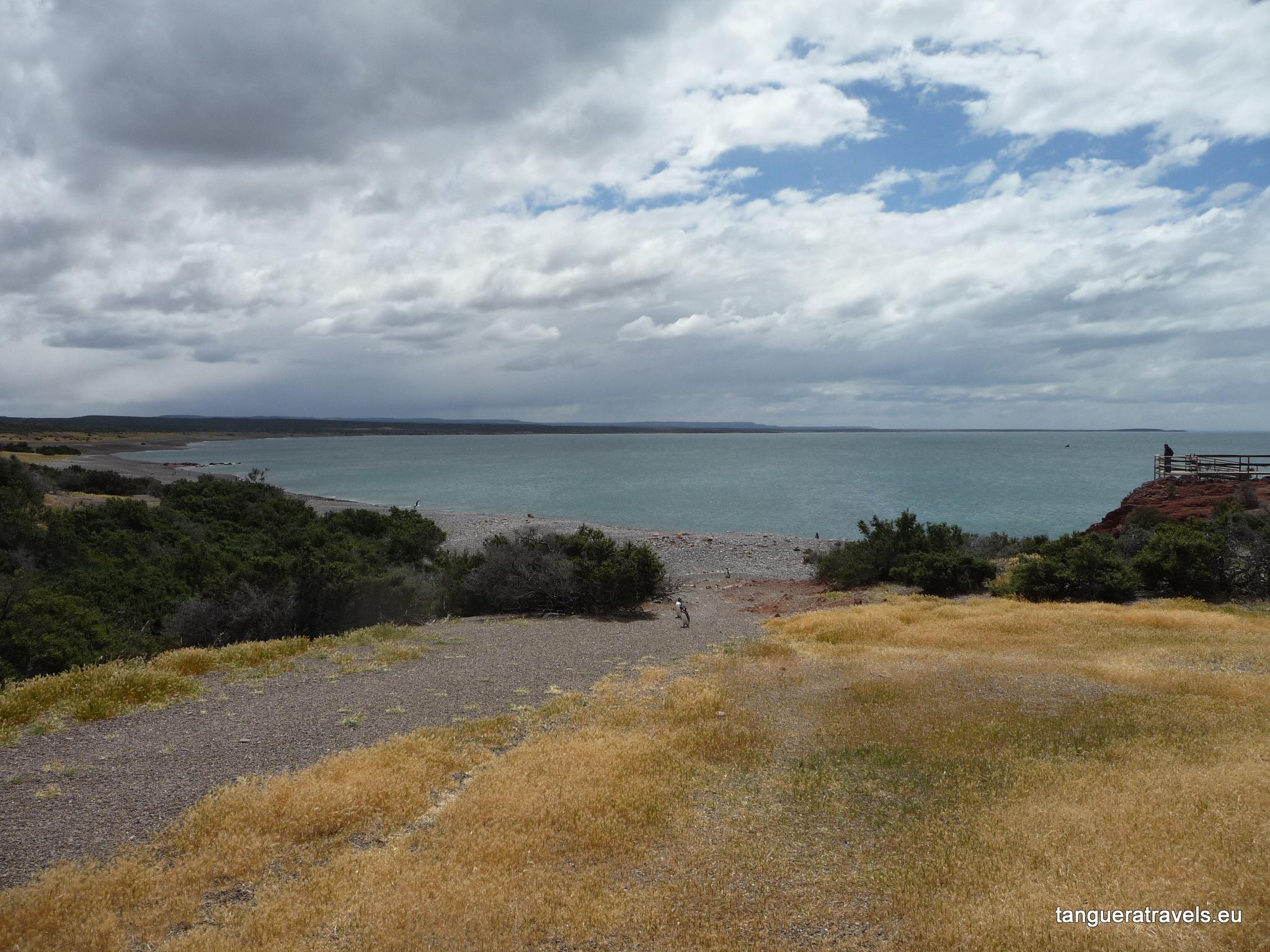 landscape, Punta Tombo